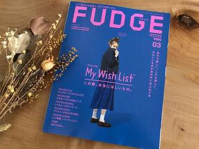 FUDGE2021.3.jpg