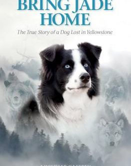 "An Interview with Michelle Caffrey, author of ""Bring Jade Home"""