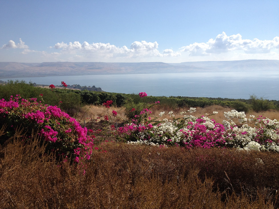 sea-of-galilee.jpg