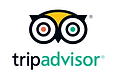 Trip Advisor Banana Palms