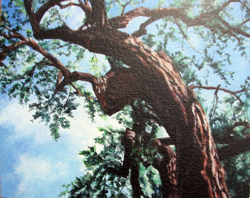Santa Fe Details Cottonwood