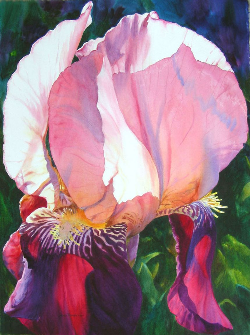 Impetuous Iris