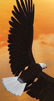 ZipBCC_Bird.JPG
