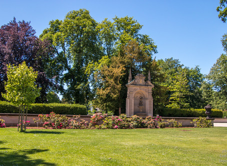 Královská zahrada a památky zdarma