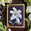 Thumbnail: Easter Lily