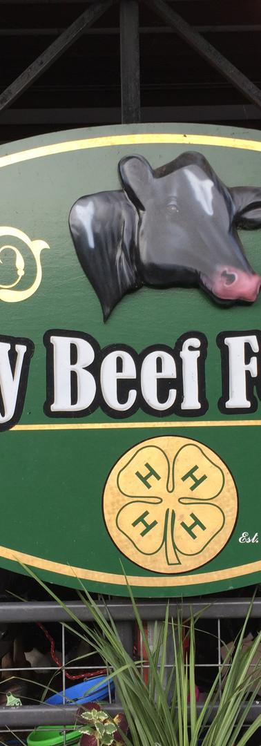 Dairy Beef Feeders.JPG