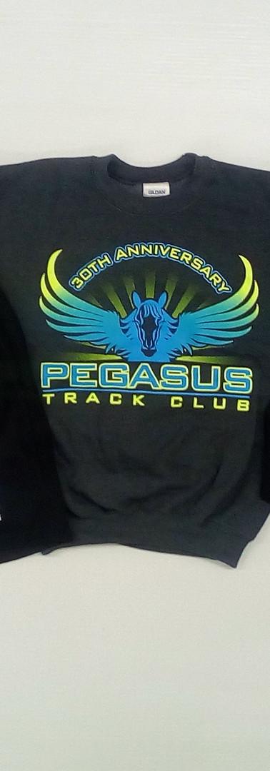 Pegasus sale.jpg