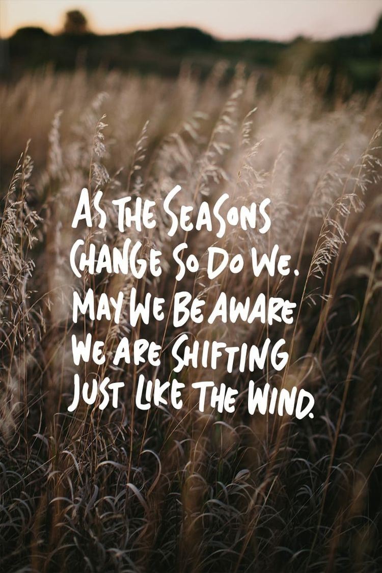 Quote graphic by Sisters of the Mists via Pinterest