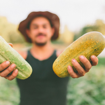 200 Islanders a 'fraction' of Victorian harvest needs as NSW grants public servants harvest leave