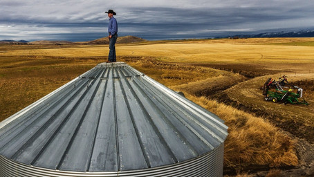 Your farmgate data for the week ending 30 April
