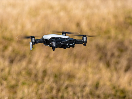 Drones better shepherds than dogs, humans: Aust. study