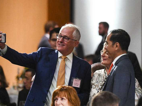 Malcolm Turnbull hardly warmed the chair at NSW climate body