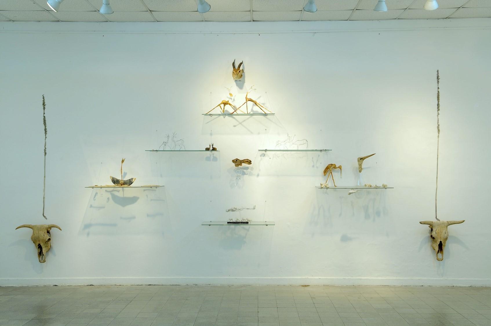 חד גדיא ,   2012  טכניקה מעורבת (מדפי זכוכית, אובייקטים מנייר, חוט תיל, שעווה, פוחלצים, גולגלות פרה,