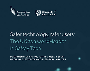 DragonflAI As a leader in safety tech
