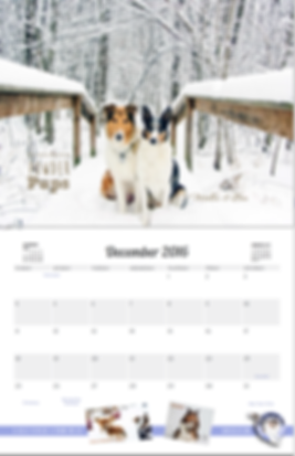CRICalendar2016_PowderPups.png