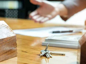 Como começar na casa nova: itens indispensáveis