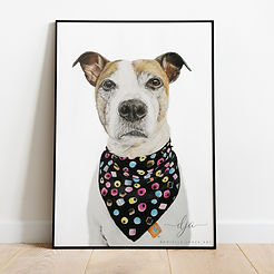 Jack Russel dog with bandana pet portrai