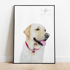 Golden Labrador Dog Pet Portrait in Colo