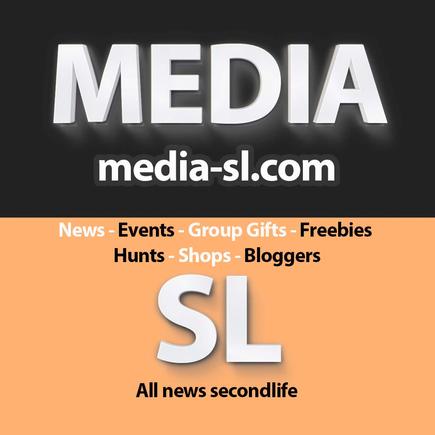 Logo Mediasl.png