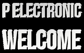 กรองไฟ P Electronic ยินดีต้อนรับ