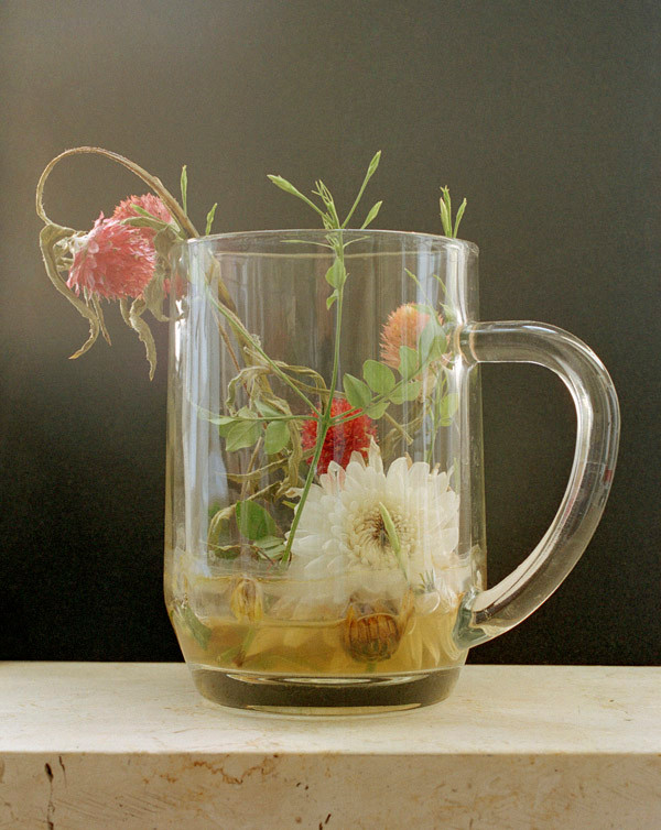 04-EinatArifGalanti-VnV-beer glass.jpg