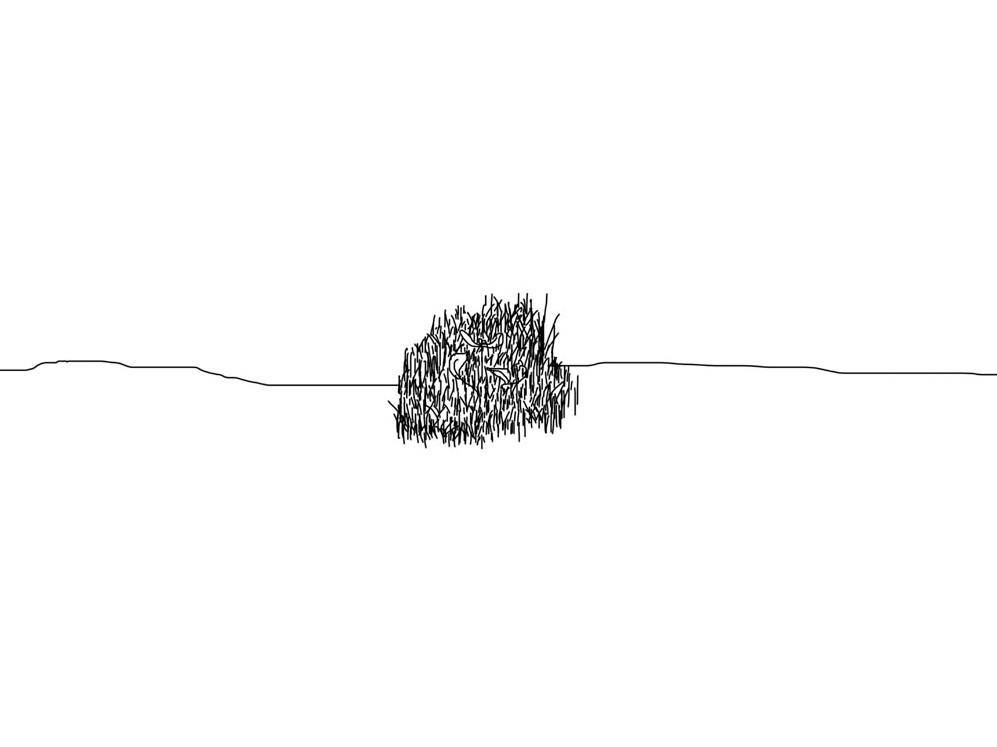 22-Einat Arif-Galanti-bush drawing-.jpg