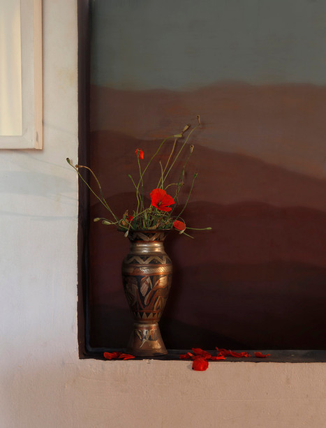 Einat Arif-Galanti-Papaver hybridum-2013