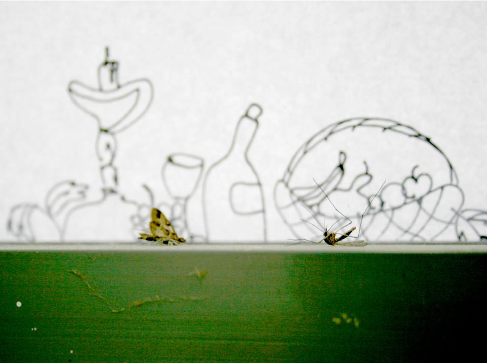 12-Einat Arif-Galanti-bugs on windowsill