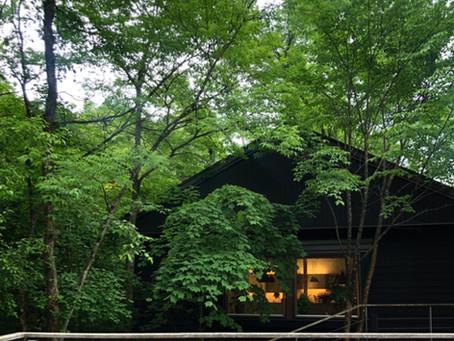 6月号【軽井沢南ヶ丘パッシブハウス】レター🌿