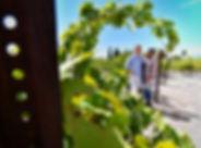 Pahrump Valley Winery wedding, Las Vegas, The Roving Reverend