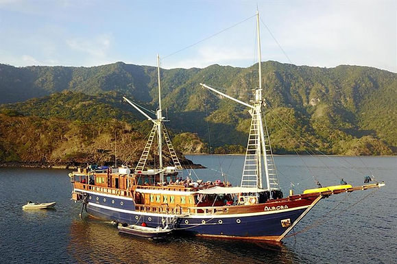 Indonesia, Aurora Liveaboard Jan 30-Feb 7, 2022