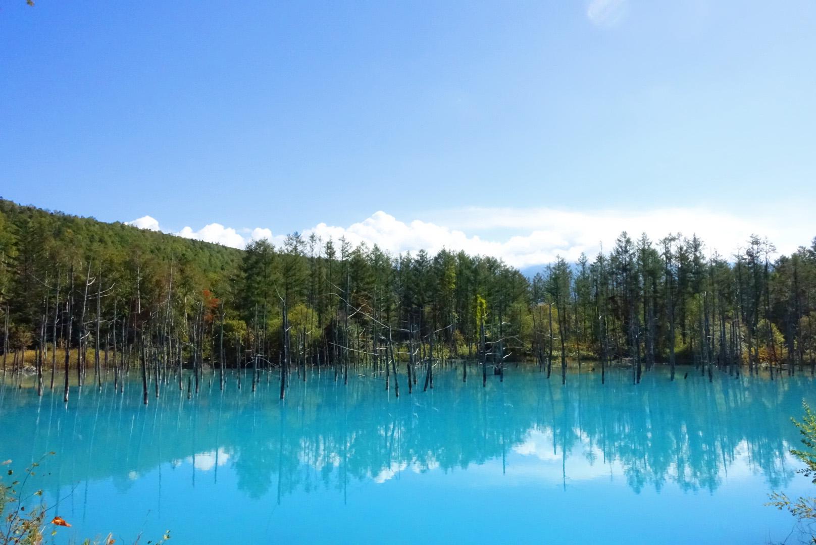 W2018J青い池 (6)