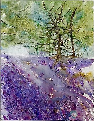 Bluebell Walk - Mita Higton (framed)