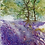 Thumbnail: Bluebell Walk - Mita Higton (framed)