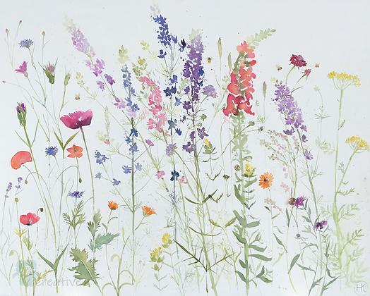English Summer Flowers - Helen Clarke (canvas)