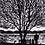 Thumbnail: Rectangular Art Card: 'At the Lake' Linocut - by Helen Maxfield