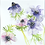 Thumbnail: Pale Anemones - Helen Clarke (mounted)