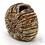 Thumbnail: Ammonite Carved Sculpture -  Emma Jayne Robertson