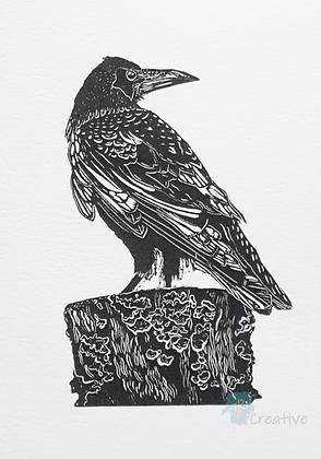 Rectangular Art Card: Rook by Deborah Vass