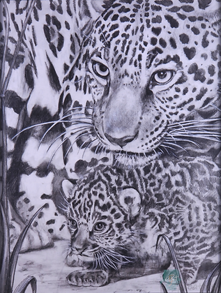 Jaguar - Briony Howell (framed print)