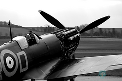 Merlin Spitfire - Robert Fry
