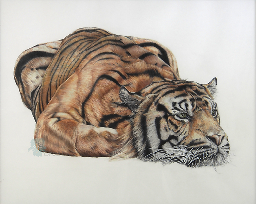Tiger - Susie Bee (framed)