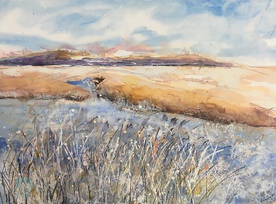 Minsmere to Dunwich (framed)- Mita Higton