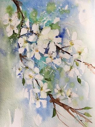 May Blossom - Helen Clarke (framed)