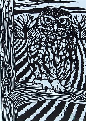 Rectangular Art Card: 'Little Owl ' Linocut - by Helen Maxfield