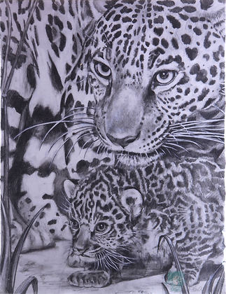 Jaguar and Cub - Briony Howell (mounted print)