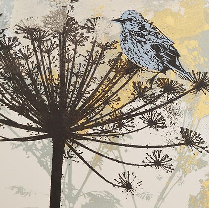 Square Art Card: Blue Bird on Cow Parsley by Claire Cockayne