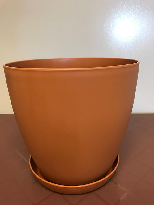 Begonia Round Terracotta pot and saucer 28cm