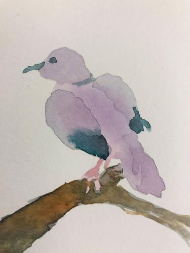 1 Birds in watercolour