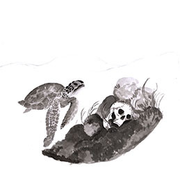 Illustration - Nina